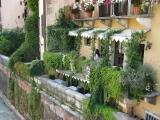 Mailand_Verona_2014 362